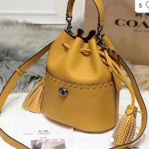 NWT COACH LORA WHIPSTITCH BUCKET BAG
